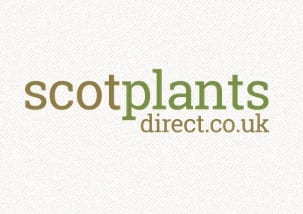 Scotplants Direct E-commerce website